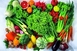 Các loại hoa quả có lượng đường thấp mà người bị tiểu đường nên biết tới