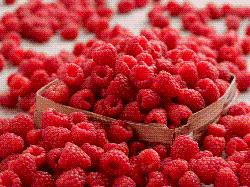 Giá trị dinh dưỡng của quả mâm xôi và quả việt quất