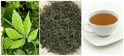 Giảo cổ lam 5 lá - loại thảo dược tuyệt vời cho sức khỏe